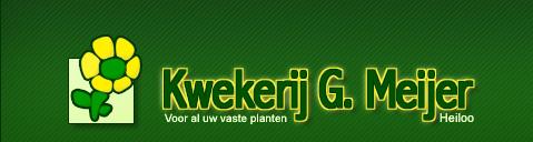 www.g-meijer.nl